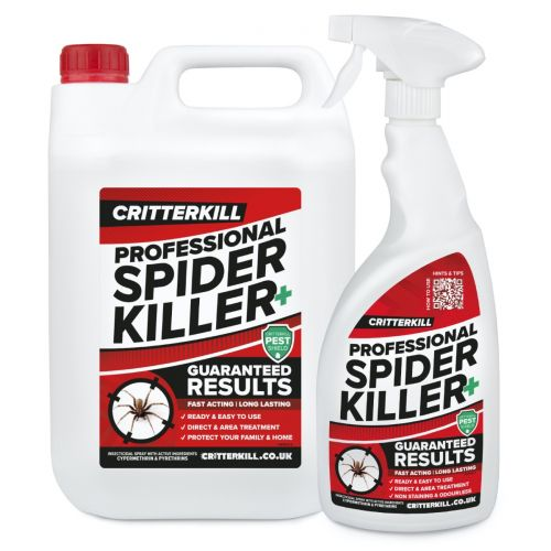 spider killer spray